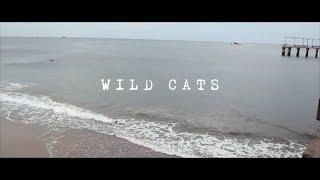 "MUSIC: DJ Skizz ""Wild Cats"" ft. Milano Constantine & Nem$ (Official Video)"